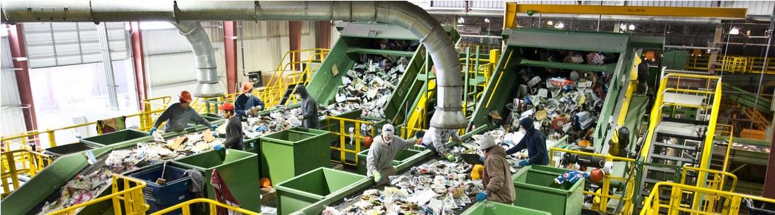 люди сортируют мусор